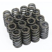 competition single 160lbs valve springs c.saxo